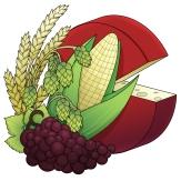 University of Nebraska Brewers and Fermentors Association Logo Design